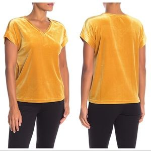NEW Sanctuary Holly Stretch Velvet Tee Gold